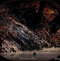 Scenic Sucarnoochee River - Wood Duck by Travis Truelove