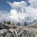 Scenic View In Yosemite National Park by Carol M Highsmith