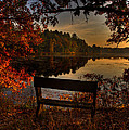 Scenic View by Thomas Young