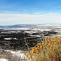 Scenic Vista by Annie Adkins