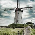 Schellemolen Windmill by Phyllis Taylor