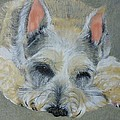 Schnauzer Pet Portrait Original Oil Painting 8x10 Inches Made To Order by Shannon Ivins