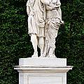 Schonbrunn Palace In Vienna Austria - Garden Statue Detail by Aleksandar Mijatovic