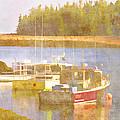 Schoodic Peninsula Maine by Carol Leigh