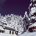 Schoolhouse by George Tuffy