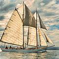 Schooner 101a by Dean Wittle