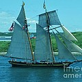 Schooner in Halifax Harbour