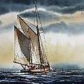 Schooner by James Williamson