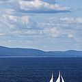Schooner On The Bay by Diane Diederich
