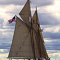 Schooner Virginia by Joe Geraci