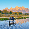 Schwabacher Morning Travels by Greg Norrell