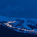 Schweitzer - Winter Solstice 2014  -  141221a-037 by Albert Seger