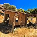Scorpion Ranch Remnants by Adam Jewell