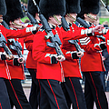Scots Guards by Brian Jannsen