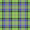 Scott Ancient Green Tartan by Gregory Scott