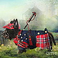 Scottie Of The Glen by Trudi Simmonds