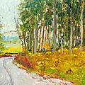 Scottish Forest In Spring by Dai Wynn