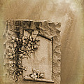 Scroll And Flowers The Forgotten Series 12 by Cynthia Woods