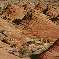 Sculpted Colorado Sandstone Paria Canyon by Gerry Ellis