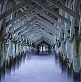 Sea Cathedral by David Waldrop