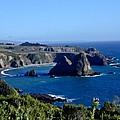 Sea Coast Of Northern California by Douglas Barnett
