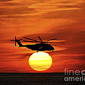 Sea Dragon Sunset by Al Powell Photography USA
