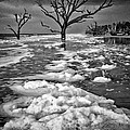 Sea Foam Botany Bay by Carrie Cranwill