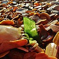 Sea Glass And Shells 16 10/2 by Mark Lemmon