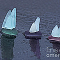 Sea Glass Flotilla by Barbara McMahon
