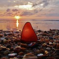 Sea Glass Sunrise And Shells 9 10/18 by Mark Lemmon