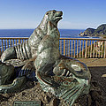 Sea Lion Caves - Oregon by Daniel Hagerman