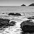 Sea by Matthew Gibson