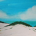 Sea Oat Dune 4 by Rhodes Rumsey