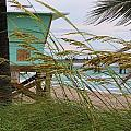 Sea Oats And The Tower by Chuck  Hicks
