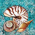 Sea Shells Original Coastal Painting Colorful Nautilus Art By Megan Duncanson by Megan Duncanson