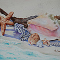 Sea Shells Two by Barbara Carswell