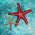Sea Shore Original Coastal Painting Colorful Starfish Art By Megan Duncanson by Megan Duncanson