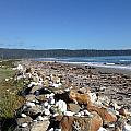 Sea Shore With Rocks by Ron Torborg