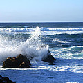 Sea Spray by Barbara Snyder