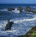Sea Stacks Central Coast Near Rockport California by Dave Welling
