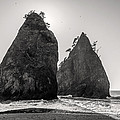 Sea Stacks In Black And White by Pierre Leclerc Photography