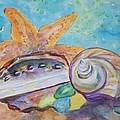 Sea Star-abalone-snail Shell by Ellen Levinson