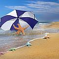 Sea Star Celebration  by Betsy Knapp