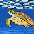 Sea Turtle by Adam Johnson