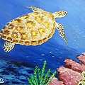 Sea Turtle by Amelie Simmons