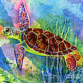 Sea Turtle by Hailey E Herrera