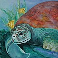 Sea Turtle by Lisa Graves
