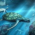 Sea Turtles by Daniel Eskridge