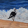 Seagull And Surf by Caroline Street