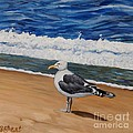 Seagull At The Seashore by Caroline Street